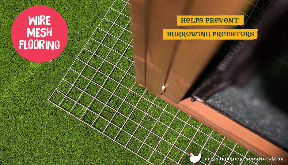 Wire mesh flooring for your chicken coop to help prevent burrowing predators