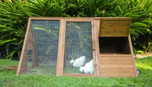 outdoor cluck house backyard chicken coop for bantams and baby chickens
