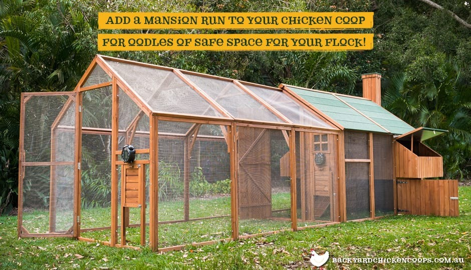 The Mansion Chicken Run attaches to the Mansion Backyard Chicken Coop.