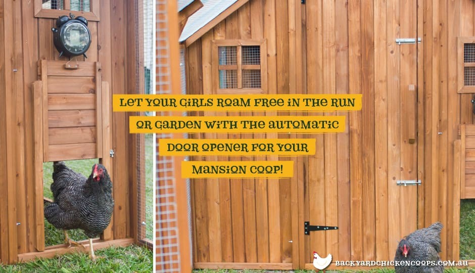 The Mansion Chicken Coop exterior view with Automatic Door Opener with text: Let your girls roam free in the run or garden with the Automatic Door Opener for your Mansion Coop.
