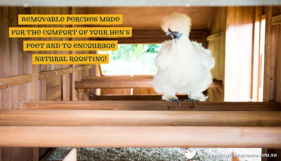 ... The Mansion Chicken Coop Interior View Perches With Text: Removable  Perches Made For The Comfort ...