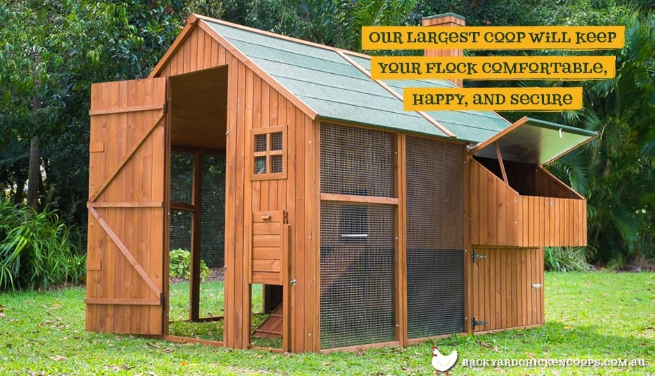Walk In Chicken House mansion & run package - chicken houses