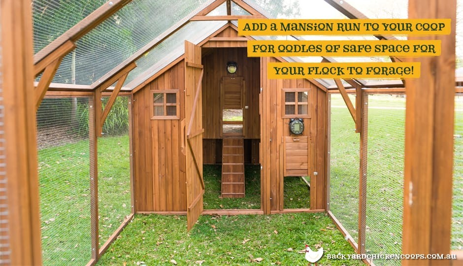 The Mansion Chicken Coop interior view with Mansion Run attached with text: add a Mansion Run to your coop for oodles of safe space for your flock to forage.