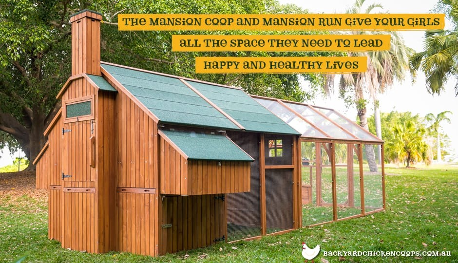 The Mansion Chicken Coop rear view with Mansion Run attached with text: the Mansion Coop and Mansion Run give your girls all the space they need to lead happy and healthy lives.