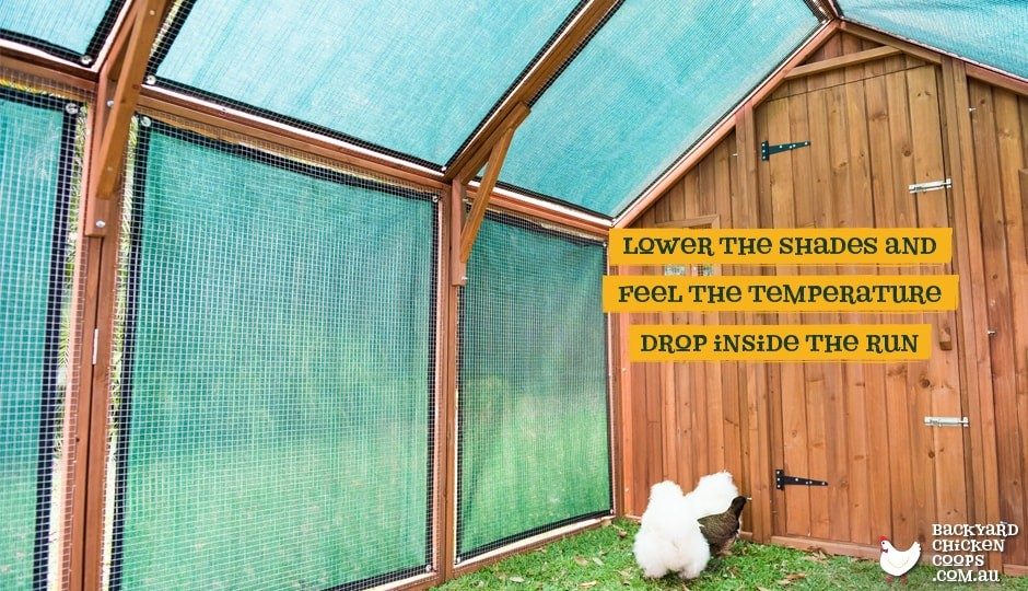 The Mansion Chicken Run and Mansion Chicken Coop with Coop Shade Mesh interior.