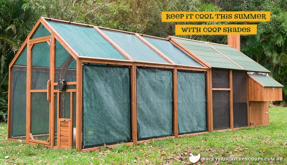 The Mansion Run Backyard Chicken Coops - Backyard poultry information centre australia