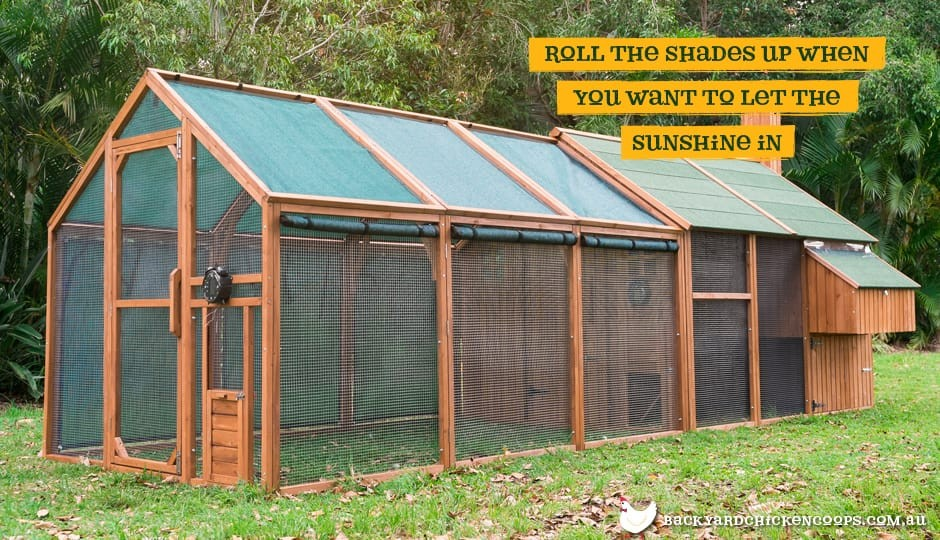 The Mansion Chicken Run and Mansion Chicken Coop with Coop Shade Mesh rolled up.