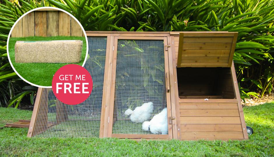 cluck house mother hens peck free hemp thumbnail