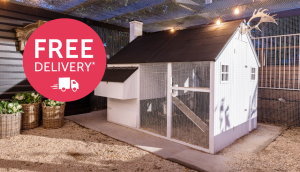 outdoor mansion chicken coop featured thumbnail