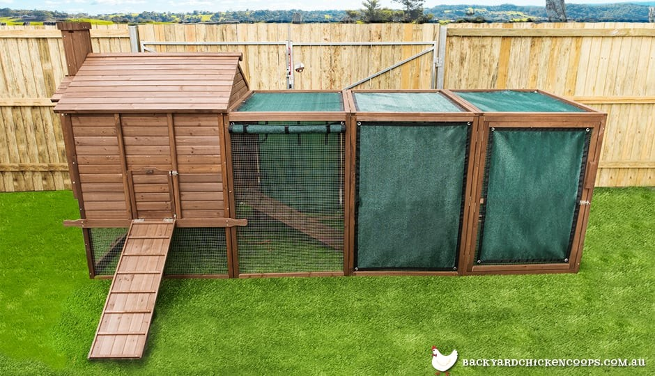 The Penthouse backyard chicken coop showing optional extra shade mesh