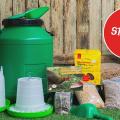 backyard chicken starter kit