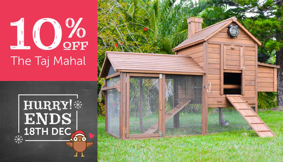 taj mahal outdoor chicken coop Christmas