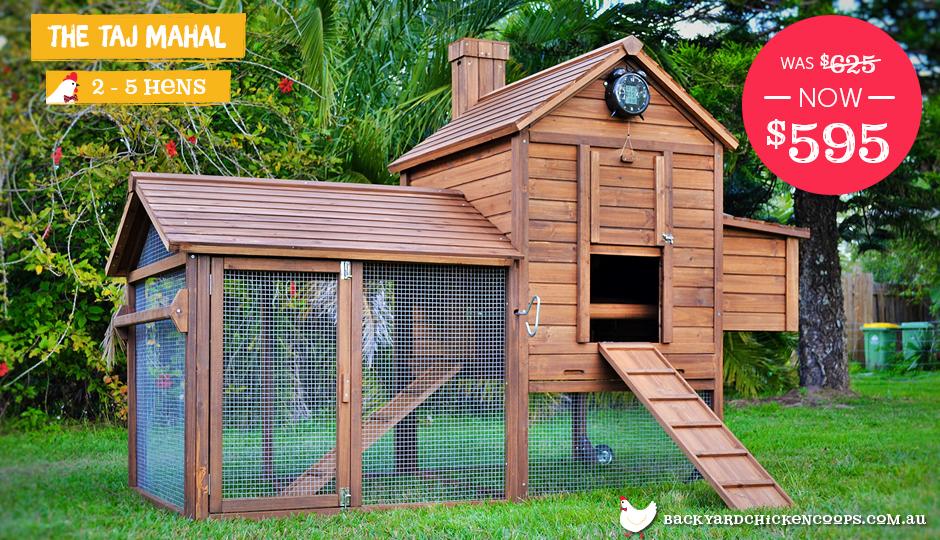 outdoor taj mahal chicken coop