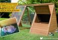 Rabbit in hoppy hotel bunny enclosure access door