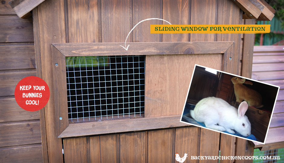 Wiggle den rabbit enclosure with ventilation window for bunny comfort