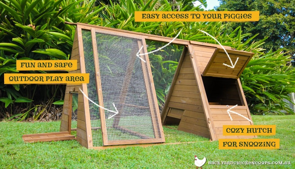 Piggy Pen guinea pig enclosure fully assembled in suburban backyard