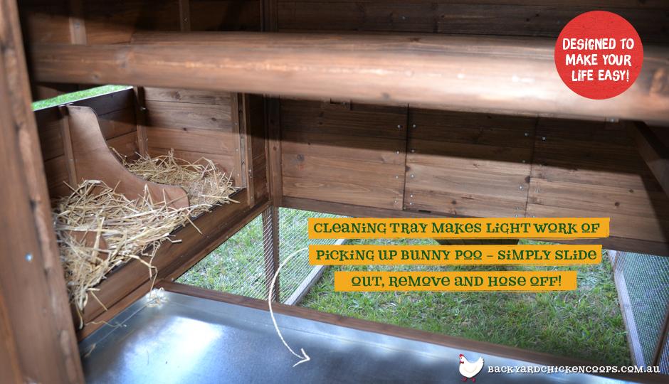 Rabbit Den bunny enclosure interior