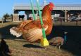 chicken-swing