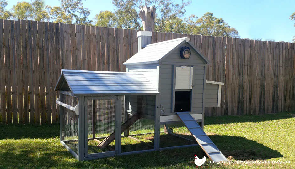 Painting Your Chicken Coop Ideas And Photos - Backyard poultry information centre australia