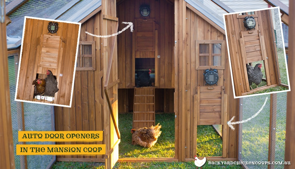 The Automatic Chicken Coop Door Opener installed in Mansion coop