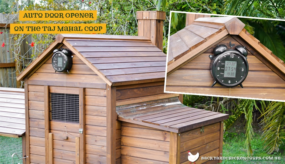 The Automatic Chicken Coop Door Opener installed in Taj Mahal coop