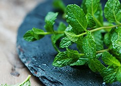 Mint leaves on slate