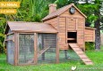 Taj Mahal backyard chicken coop