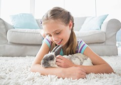 caring for rabbits is easy, and children will love playing with their fluffy bunny rabbit friend