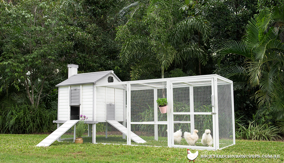white-penthouse-coop