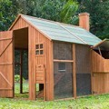mansion-backyard-chicken-coop