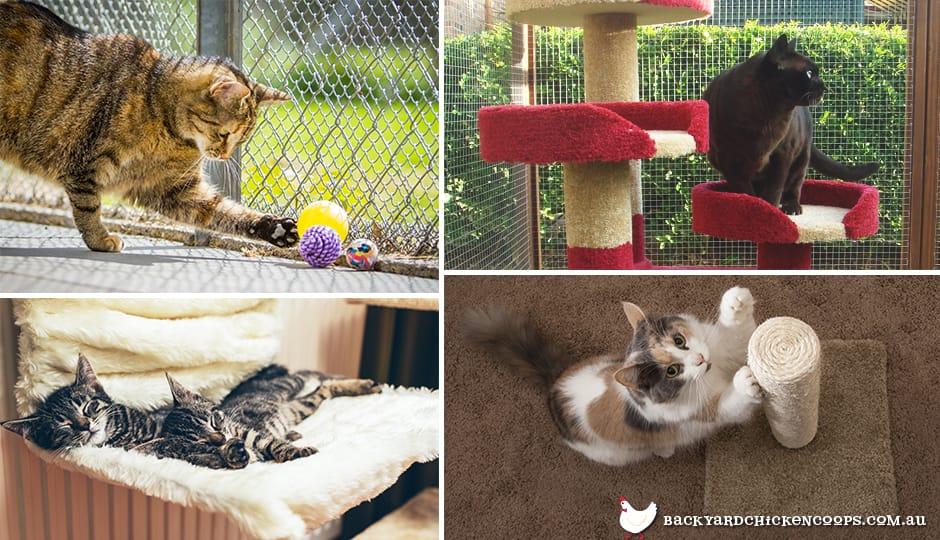 prevent neutered cat spraying