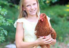 Girl holding ISA Brown chicken in backyard garden