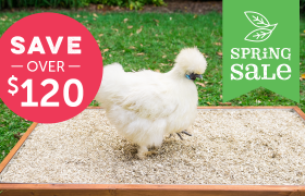 hemp bedding for chicken coop spring sale