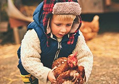 cold-young-boy-holding-chicken