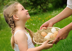 Young girl holding basket of chicken eggs in backyard