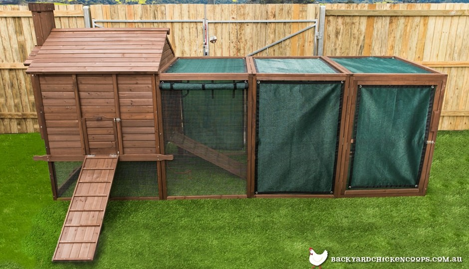 Penthouse backyard chicken coop with shade mesh attached