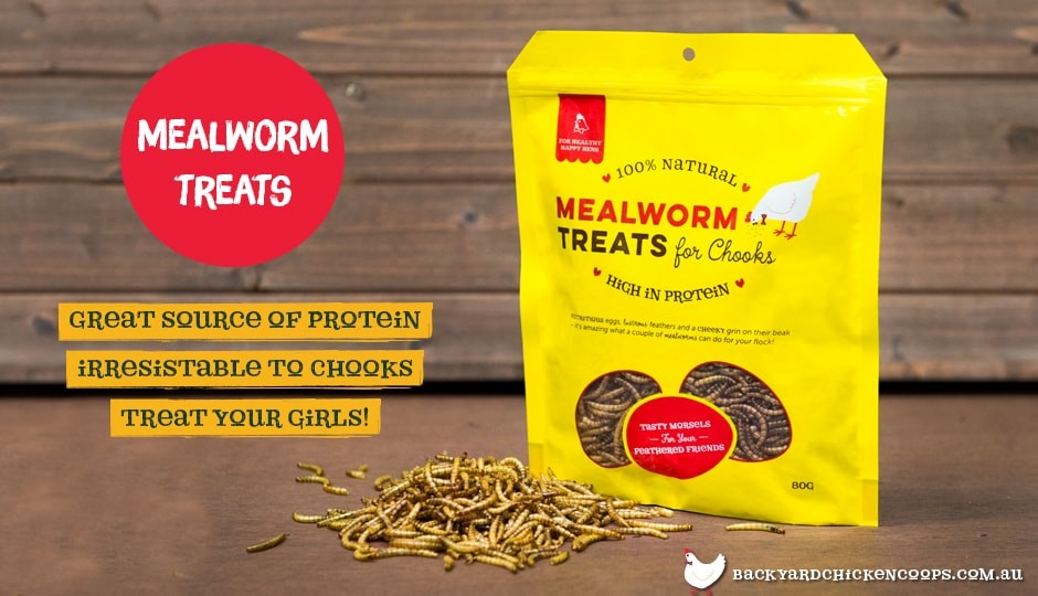 Packaging of Backyard Chicken Coops mealworms