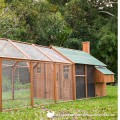 Mansion backyard chicken coop and run package deal
