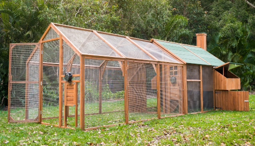 outdoor mansion chicken coop and run for free range hens