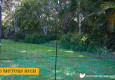 Poultry fencing for backyard chickens 1.5m height
