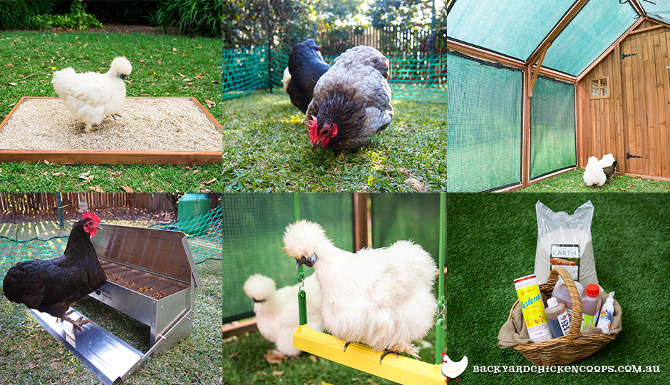 essential chicken coop accessories
