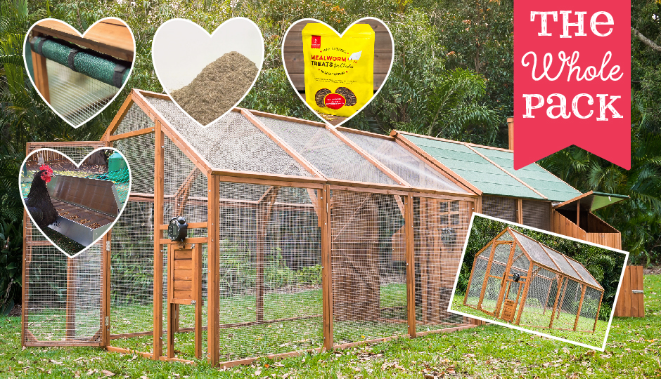 backyard chicken coop double run and mansion valentine package
