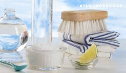 natural chicken coop cleaning products