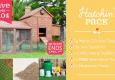 outdoor chicken coop Easter package