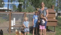phoebe chicken coop in backyard