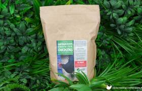 superfine diatomaceous earth for chickens