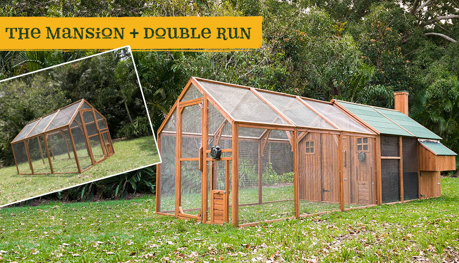 Mansion chicken coop and double chicken run