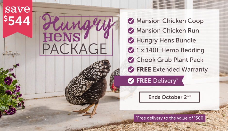 hungry hens spring package